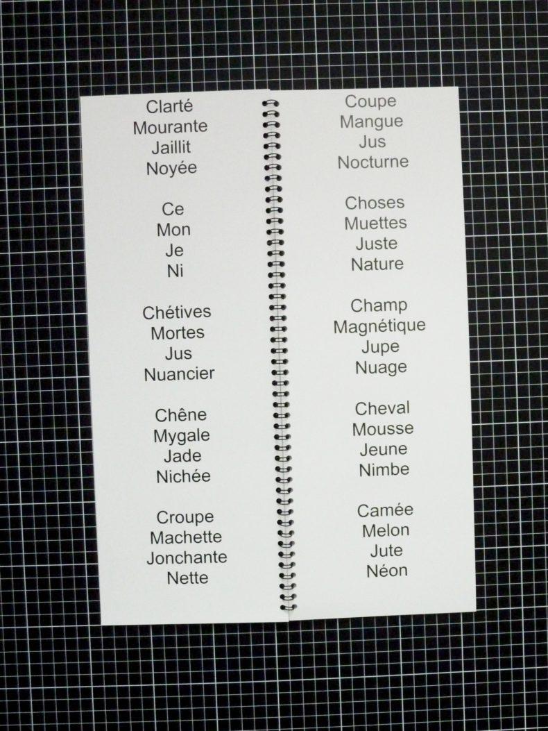 Comment Mieux Jouir Noisette - Clément Rodzielski